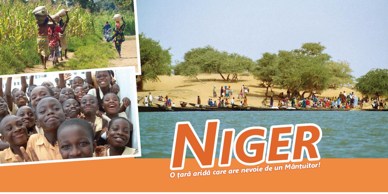 Niger Flyer