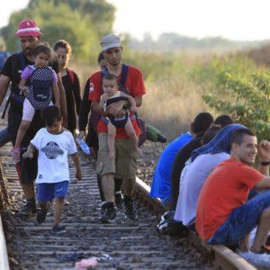Refugee problem… or opportunity?