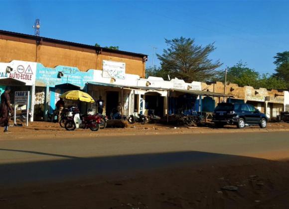 Protejat: Înapoi în Africa – Scrisoare de Informare