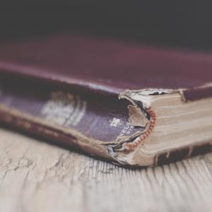 Domnul nostru este viu! – Scrisoare Misionară, Helena – India