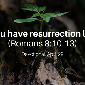 You have resurrection life (Romans 8:10-13) – Devotional, April 29
