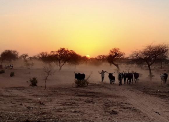 Protejat: Scrisoare Misionară – Dabo și Rekiya, Africa de Vest