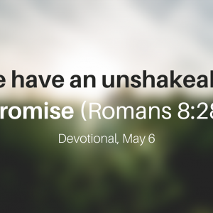 We have an unshakeable promise (Romans 8:28) – Devotional, May 6