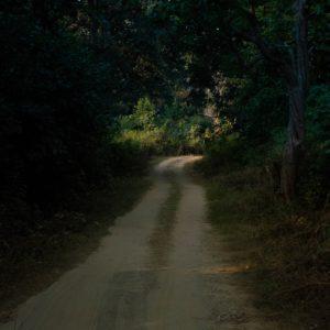 Scrisoare de Rugăciune, India (2 octombrie 2020)
