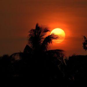 Scrisoare de Rugăciune – West Bengal, India (15 ianuarie 2021)