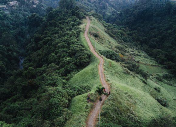Calea Păcii